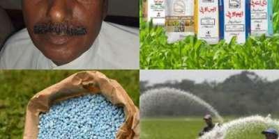 کندھ کوٹ زرعی کھاد کےڈیلرز مصنوعی مہنگے دام مقرر کرکے کسانوں کا جینا ..