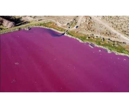 ارجنٹائن کے علاقے پٹاگونیا میں پانی کی صاف ستھری جھیل کا رنگ گلابی ..