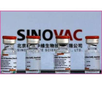 سائنوویک ویکسین سے بننے والے اینٹی باڈیز 6 ماہ میں ختم ہونے کا انکشاف