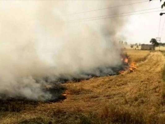 بہاول پور میں آسمانی بجلی گرنے سے سیکڑوں من گندم جل گئی
