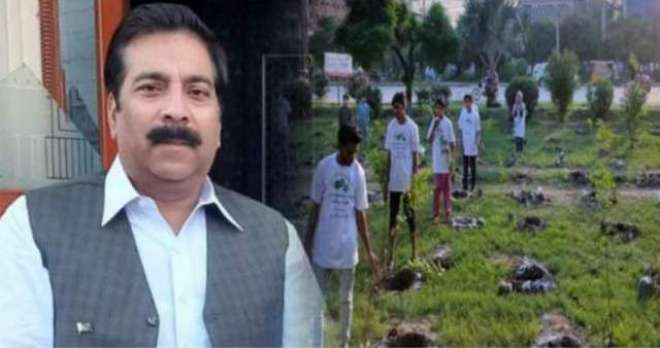 مسلم لیگ ن کے رکن اسمبلی پر پودے چوری کرنے کا الزام ثابت نہ ہو سکا، مقدمہ ..