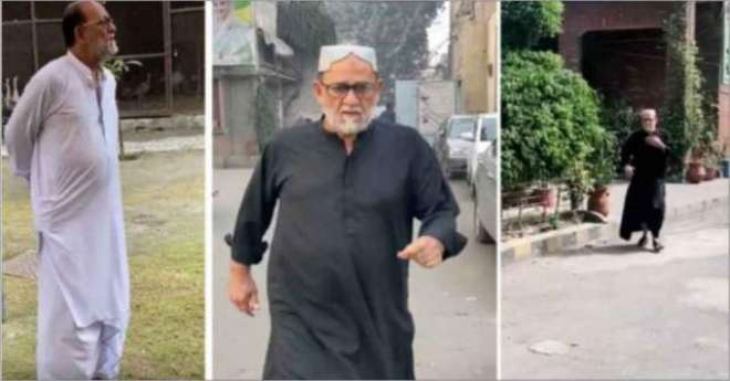 مسلم لیگ ن کے سینئیر رہنما ٹک ٹاک اسٹار بن گئے