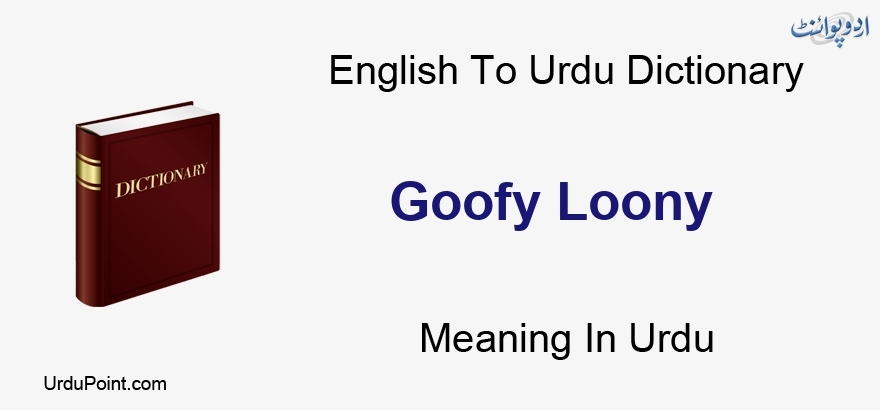 Goofy Loony Meaning In Urdu بیوقوف دیوانہ English To Urdu Dictionary