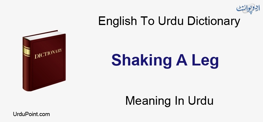 An Arm And A Leg Idiom Meaning In Urdu Shaking A Leg Meaning In Urdu متزلزل ایک ٹانگ English To Urdu Dictionary