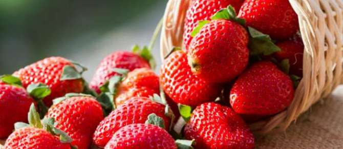 Strawberry Se Dimaghi Quwwat Main Izafa - Article No. 1080