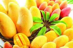 Mango... Fawaid Se Mala Maal Samar