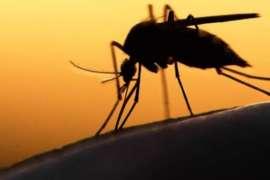 Khabardar Hoshiyar Dengue Phir Aa Giya
