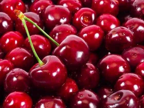 Main Cherry Hoon