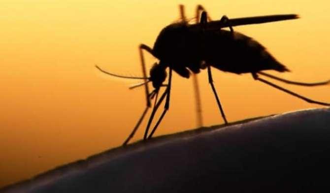 Khabardar Hoshiyar Dengue Phir Aa Giya - Article No. 1740