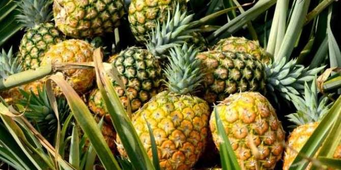 Ananas Say Kayi Amraaz Ka Khtama