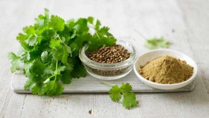 Dhaniya - Haiza,Typhoid, Or Food Poisoning Main Mufeed