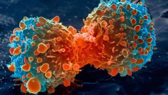 Cancer Se Bchayo Kaisay Mumkin ?