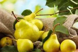 Pear - Fiber Or Vitamen Ka Khazana