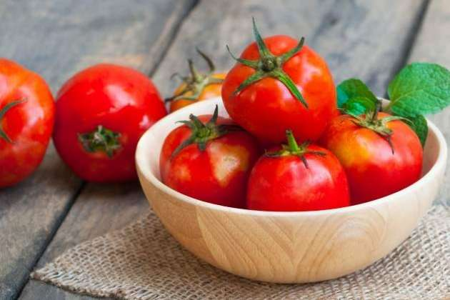 Tomato - Article No. 1957