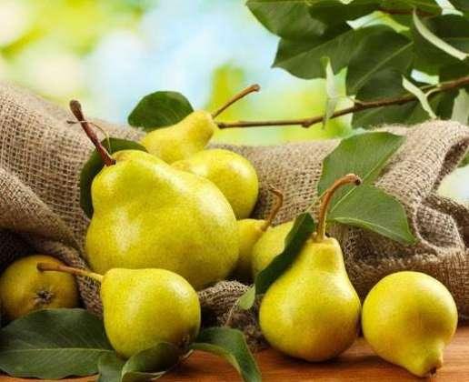 Pear - Fiber Or Vitamen Ka Khazana - Article No. 1989