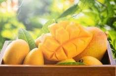 Mango - Phalon Ka Badshah Hai
