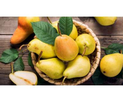 Pear (Nashpati) - Fiber Se Bharpoor - Article No. 2266