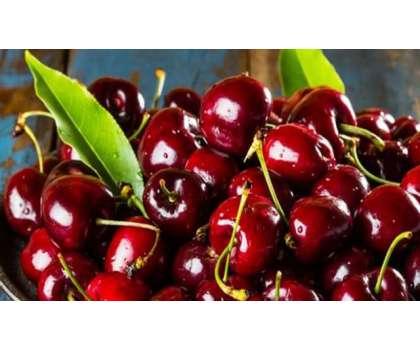 Nanhi Munni Cherry - Article No. 2196
