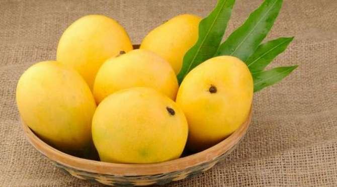 Aaye PhalooN Ke Badshah Mango Ka Istaqbaal KareeN - Article No. 2170