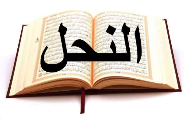 Khawab Main Soorah Al-nahal Parrhana