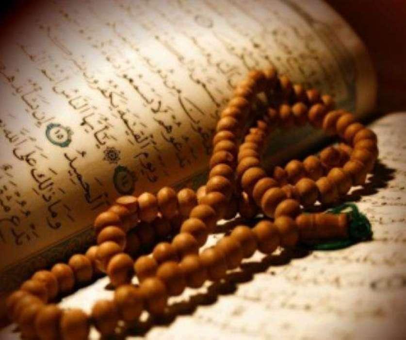 Hazrat Habib Bin Aslam Raai RA
