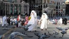 khidmat e Hajjaj ki ahmiyat o fazeelat