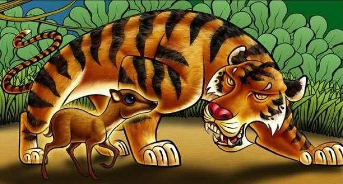 Chalak Hiran Aur Cheetah