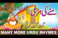 Munay Ki Murghi