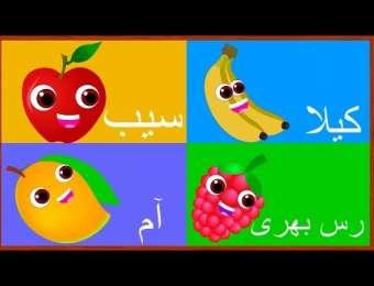 Learn Fruits Names in Urdu