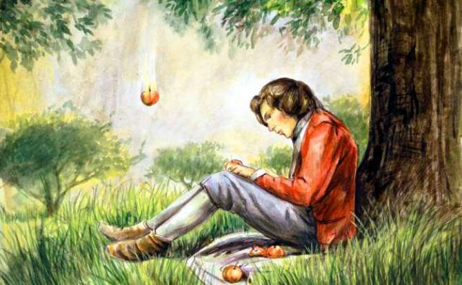 Larka or apple ka darakhat