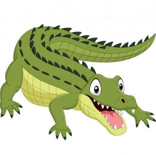 MagarMach - crocodile