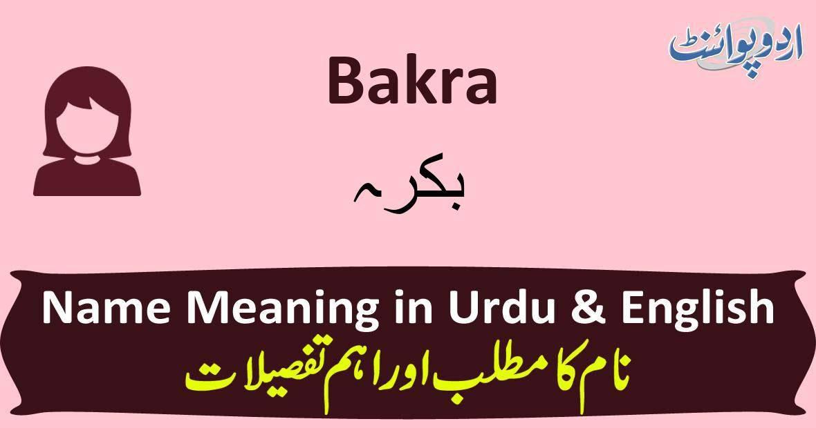 Meaning of Bakra in Urdu: - Bakra