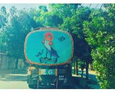 only in pakistan do you get to see all kinds of intricate or quirky, traditional or desi pop art paintings on massive busses and trucks truly inspiring and creative fun art work we have as part of our culture.