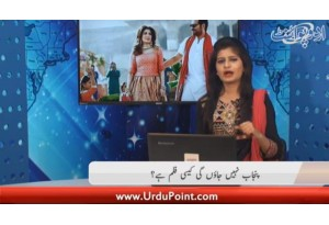 Film  Punjab Nahi Jaun Gi  Ki Box Office Par Lajawab Kaar Kardagi...