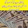 What's Current Value Of Pak Rupee In The World? Details In This Video