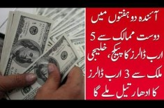Pakistan Is Expecting 5 Billion Dollars Aid In Coming Weeks, Watch Video For More Details