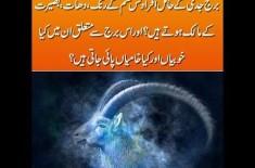 Capricorn Horoscope in Urdu 2019 - Love, Career & Future