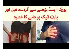 What Disease Increase In Uric Acid Can Cause, Find Out