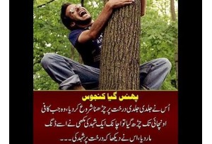 Kids Urdu Story: Usne Jaldi Jaldi Darakht Par Sharna Shuru Kar Dia, Jab Wo Kaafi Unchai...