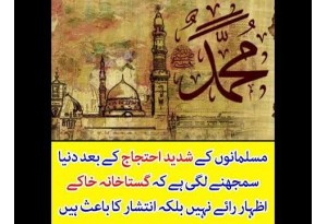 After Muslims Protest World Has Come To Know That Blasphemy Is Not Freedom Of Speech