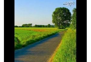 Kids Urdu Story: Khushi, Bharat K North Area Main Ek Khubsurat Aur Saaf Suthra Gaon Tha...