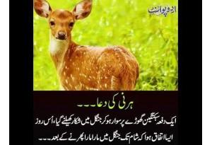 Kids Urdu Story: Hirni Ki Dua, Ek Dafa Sabuktagin Ghore Per Sawar Ho Kar Jungle Mein Shikar...