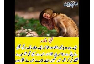 Kids Urdu Story: Tanha Bandar, Ek Din Wo Youni Betha Huwa Tha K Ek Bari Rang Barangi Machli...
