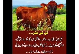 Kids Urdu Story: Kal Ki Fikr, Ek Haray Bharay Jungle Main Ek Gaye Rehti Thi, Subah Suba Wo...