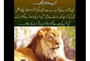 Kids Urdu Story: Ghareeb Hona Jurm Nehin, Ek Shehzade Ki Lakarhares Dosti Ho Gayi, Ek Din...