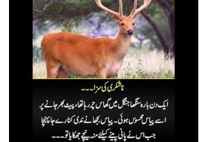 Kids Urdu Story: Nashukri Ki Saza, Ek Din Bara Singha Jungle Main Ghas Char Raha Tha...