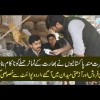 Pakistanis Give Beffiting Reply To Ridiculous Tomato Attack Of India