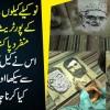 Nokeely Kilo Se Shaksiat Ke Portrait Bananay Wala Munfarid Pakistani Fankar