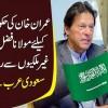 Imran Khan Ki Hakumat Giranay Ke Liye Molana Fazal-ur-Rehman Ne Ghair Mulkion Se Raabtey Kar Liye