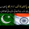 Indians Are Ungrateful To Pakistan, Only The Stoppage Of One Thing Can Make India Kneel Down